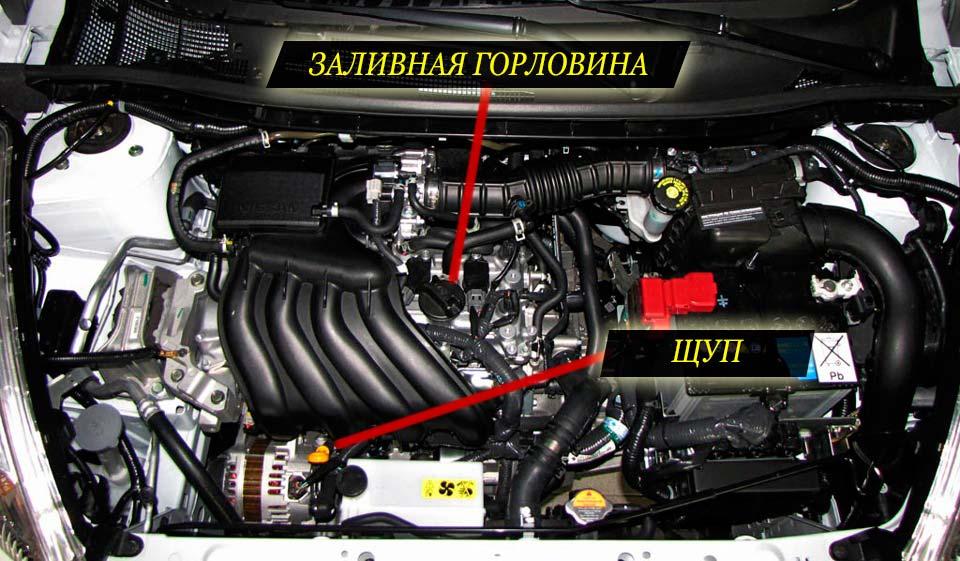 Расположение заливной горловины и масляного щупа на двигателе ниссан жук