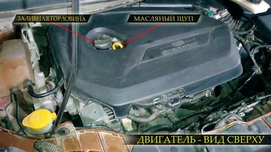 Расположение заливной горловины и масляного щупа на двигателе форд куга второго поколения