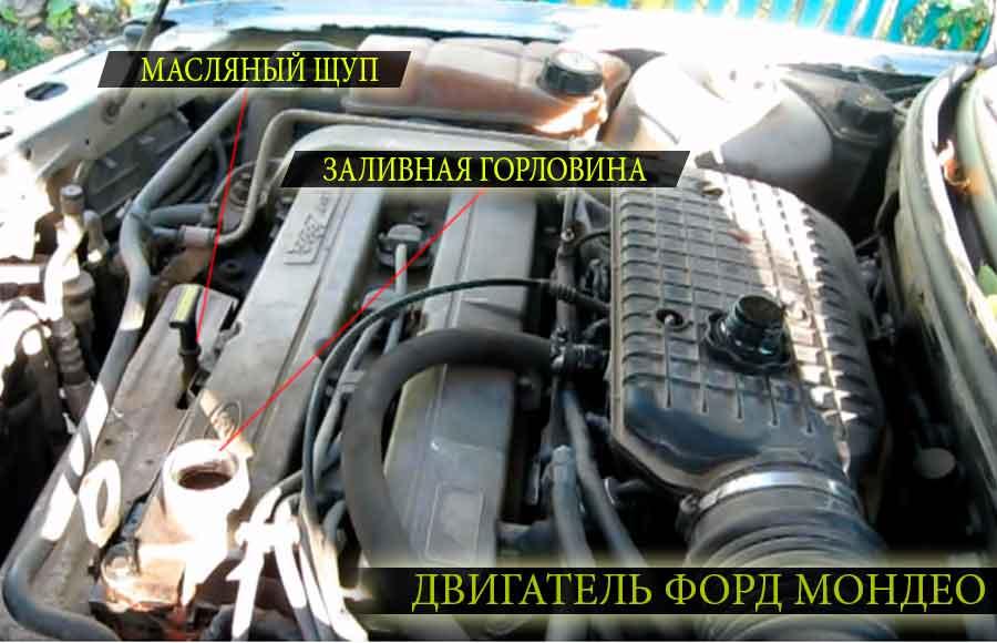 Расположение основных узлов на двигателе форд мондео второго поколения