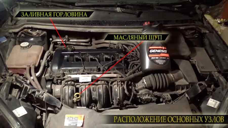 Расположение на двигателе заливной горловины и масляного щупа Форд ЭкоСпорт