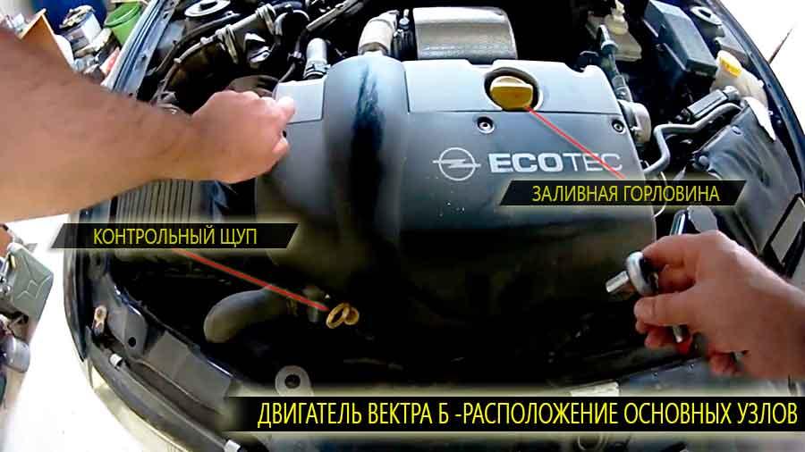 Расположение на двигателе вектра б заливной горловины и масляного щупа