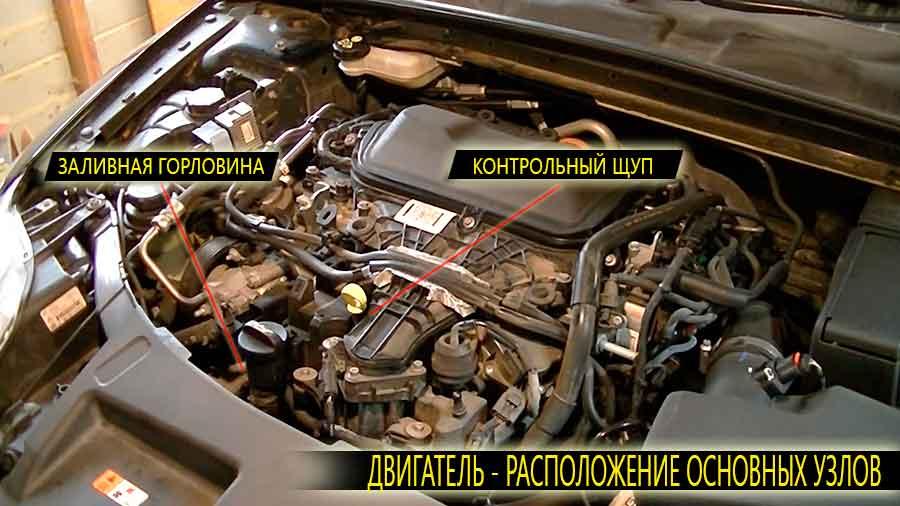 Расположение на двигателе Форд Мондео 4 поколения заливной горловины и контрольного щупа