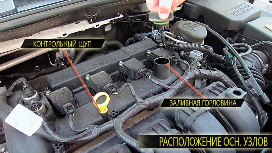 Расположение контрольного щупа и заливной горловины на двигателе Форд Фокус третьего поколения