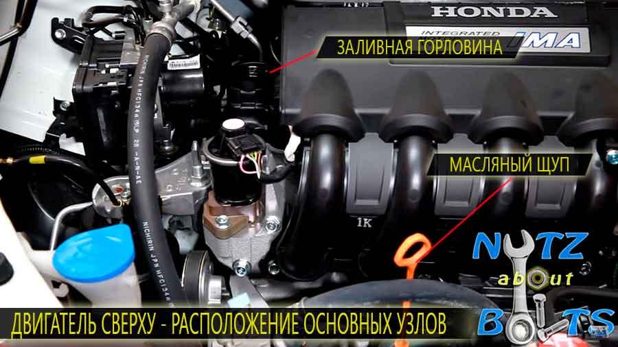 Двигатель - расположение основных узлов, заливной горловины картера и масляного щупа