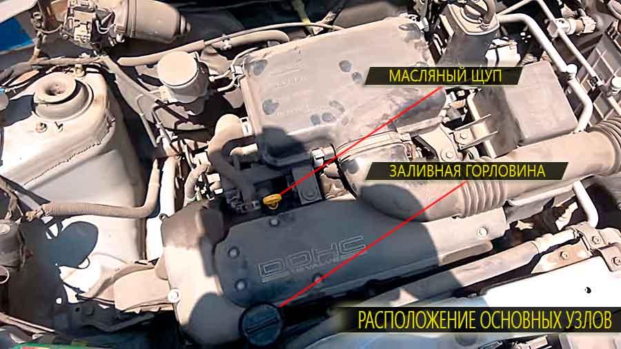 Расположение основных узлов на двигателе suzuki swift - заливная горловина и масляный фильтр картера двигателя
