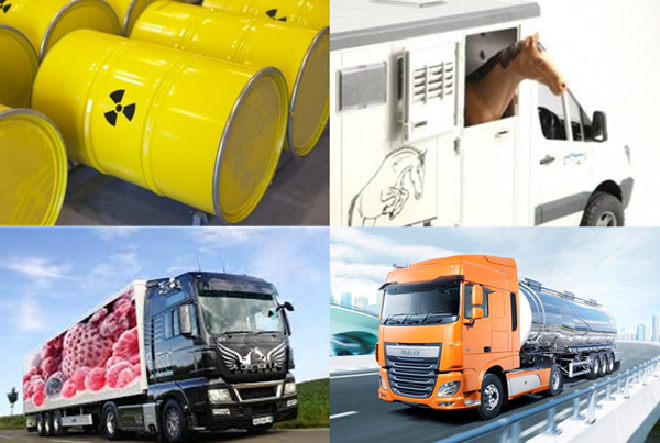 Международные перевозки: правила классификации грузов
